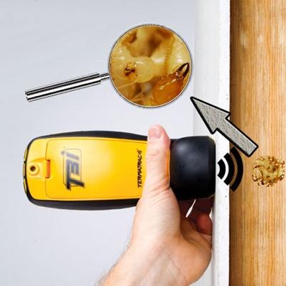 termite detection tool